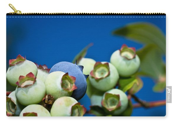Blueberries And Sky Carry-all Pouch