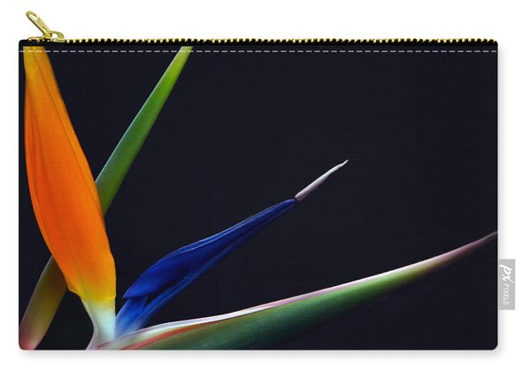 Bright Bird Of Paradise Square Frame Carry-all Pouch