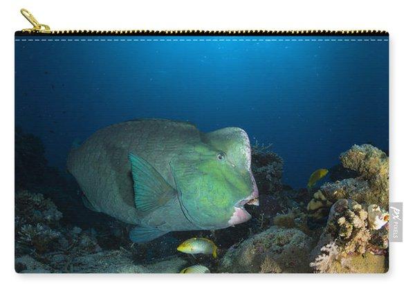 Bumphead Parrotfish, Australia Carry-all Pouch