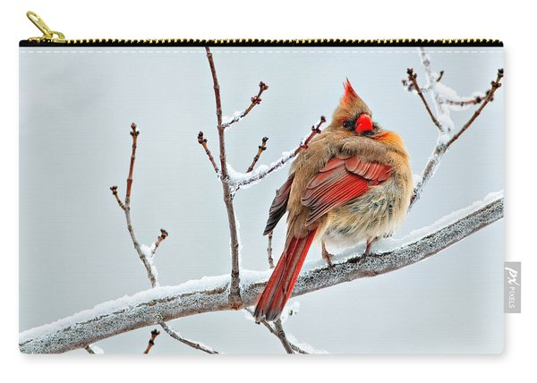Cardinal I The Snow  Carry-all Pouch