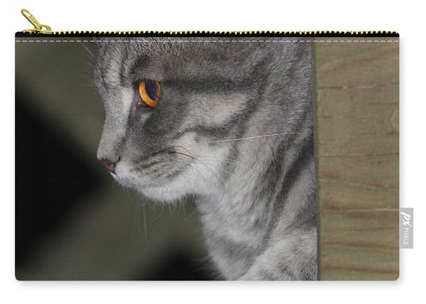 Cat On Steps Carry-all Pouch