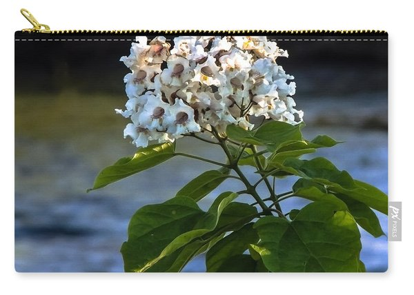 Catalpa Beauty Carry-all Pouch