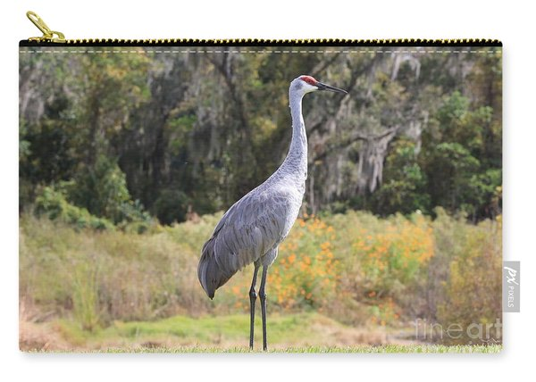 Central Florida Sandhill Crane With Oaks Carry-all Pouch