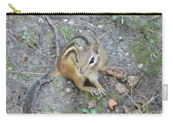 Chipmunk Feast Carry-all Pouch
