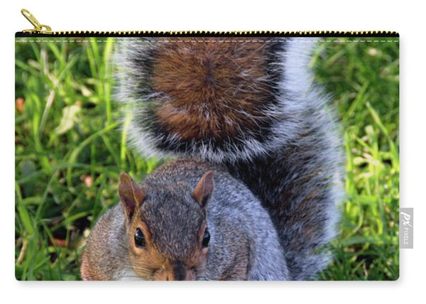City Squirrel Carry-all Pouch
