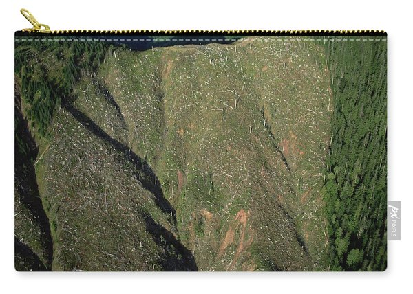 Clear Cutting, Olympic National Park Carry-all Pouch