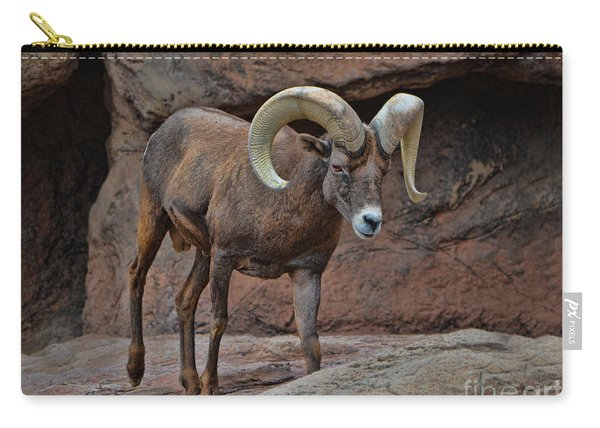 Desert Bighorn Sheep Ram I Carry-all Pouch