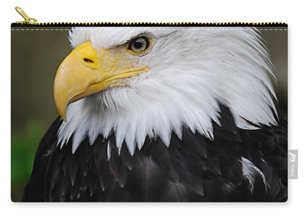 Eagle In Ketchikan Alaska 1371 Carry-all Pouch