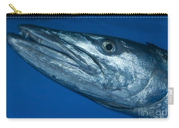 Facial View Of A Great Barracuda, Kimbe Carry-all Pouch