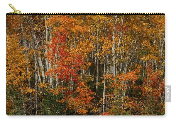 Fall Colors Grand Mesa Carry-all Pouch