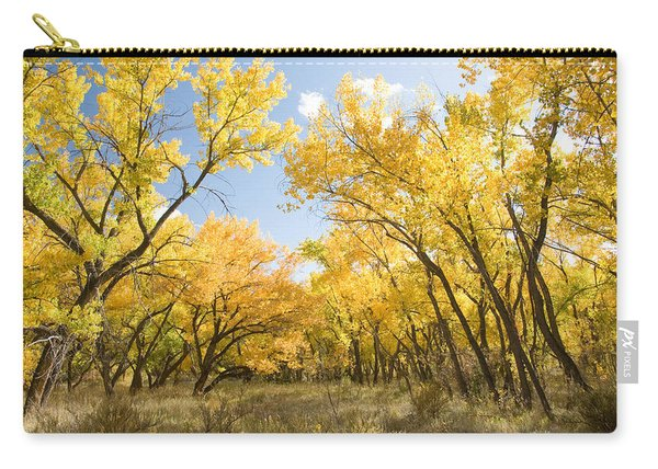 Fall Leaves In New Mexico Carry-all Pouch
