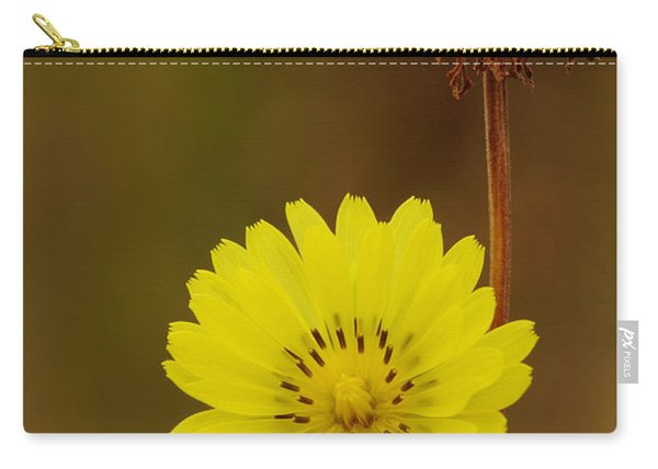 False Dandelion Flower With Wilted Fruit Carry-all Pouch
