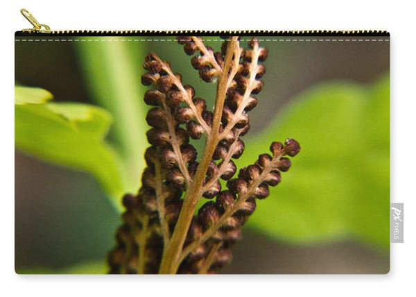 Fern Fruiting Structure Carry-all Pouch