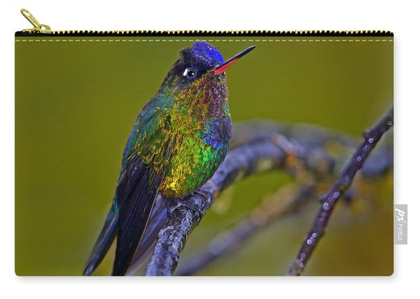 Fiery-throated Hummingbird Carry-all Pouch