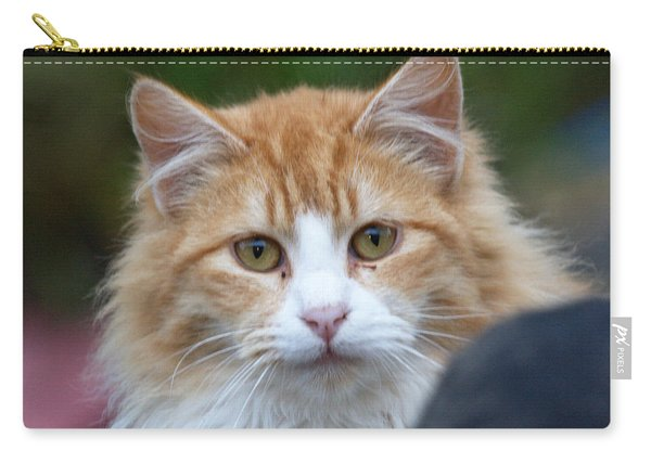 Fluffy Orange Carry-all Pouch