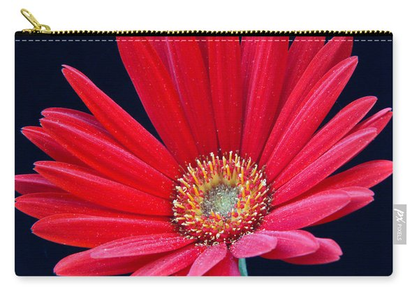 Gerbera Daisy 1 Carry-all Pouch