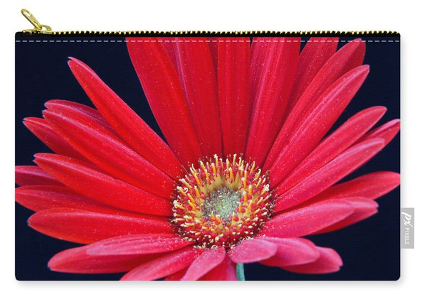Gerbera Daisy 6 Carry-all Pouch