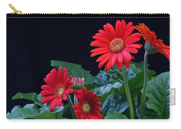 Gerbera Daisy 7 Carry-all Pouch