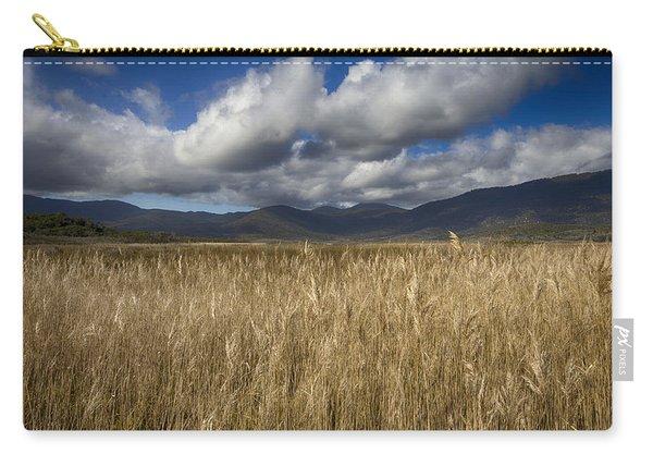 Grassland V2 Carry-all Pouch