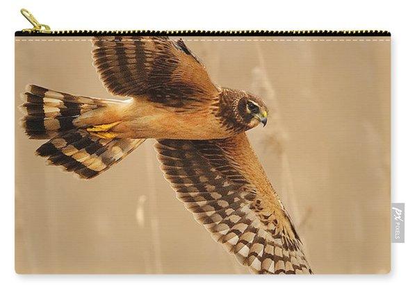 Harrier Over Golden Grass Carry-all Pouch