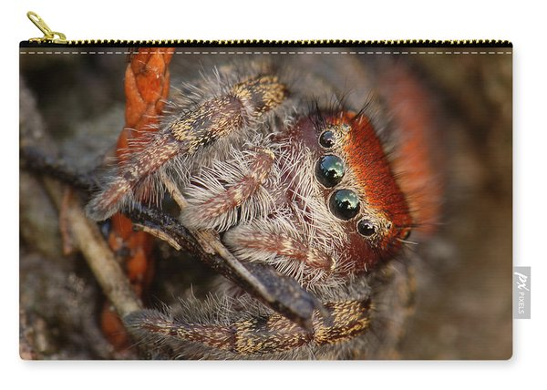 Jumping Spider Portrait Carry-all Pouch