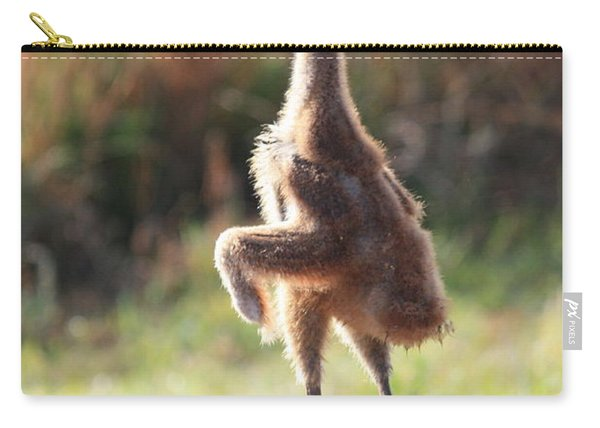 Juvenile Sandhill Basking In Sunshine Carry-all Pouch