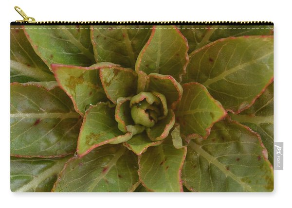 Leaf Star Carry-all Pouch