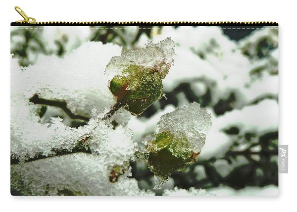 Liquid Crystal  Carry-all Pouch