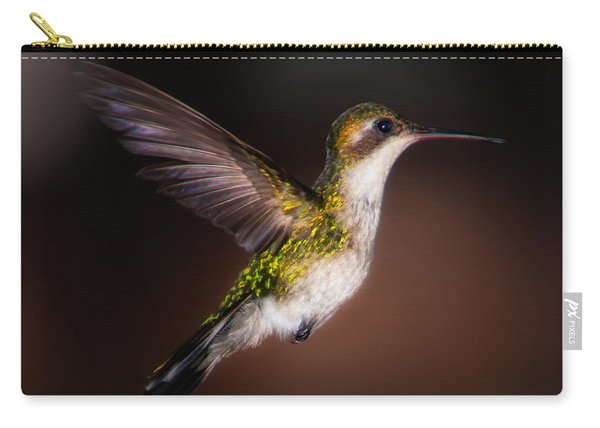 Lone Hummingbird Carry-all Pouch