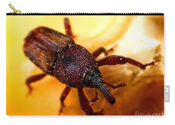 Maize Weevil Carry-all Pouch