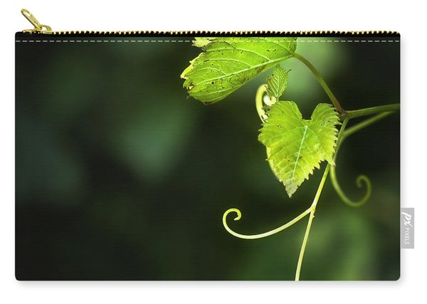 Memories Of Green Carry-all Pouch
