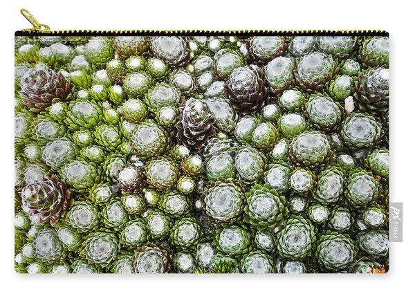 My Rockery ... Carry-all Pouch