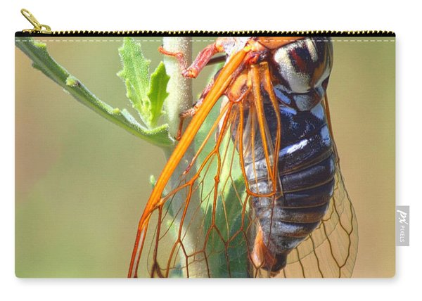 Noisy Cicada Carry-all Pouch