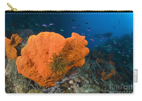Orange Sponge With Crinoid Attached Carry-all Pouch