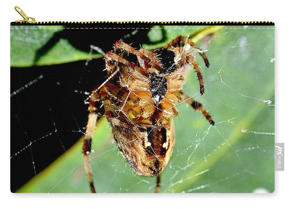Orb Weaver Waits Carry-all Pouch
