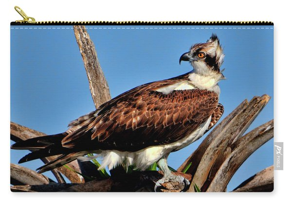 Osprey On A Windy Morning Carry-all Pouch