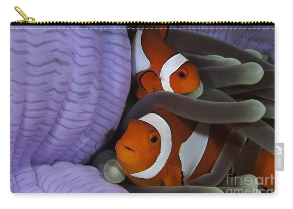 Pair Of Clown Anemonefish, Indonesia Carry-all Pouch