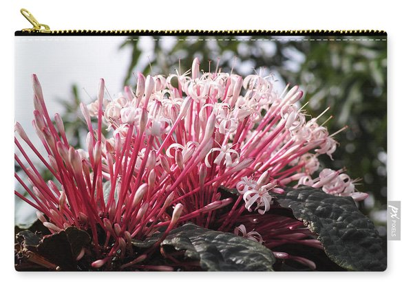 Passion For Pink Carry-all Pouch