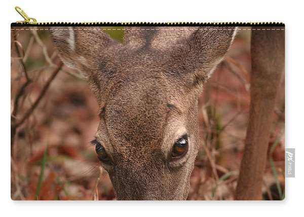 Portrait Of  Browsing Deer Two Carry-all Pouch
