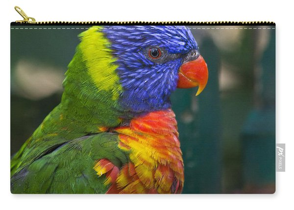 Posing Rainbow Lorikeet. Carry-all Pouch