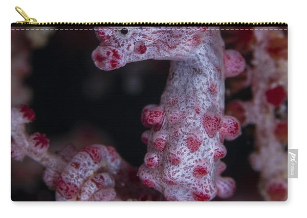 Pygmy Seahorse, Australia Carry-all Pouch
