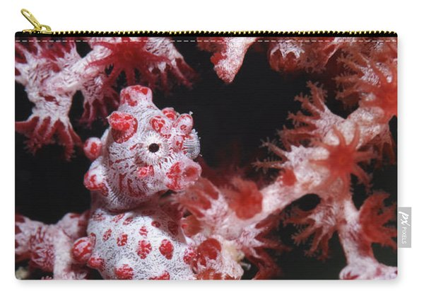 Pygmy Seahorse, Indonesia Carry-all Pouch