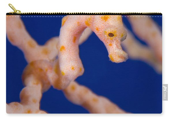 Pygmy Seahorse On Sea Fan, Papua New Carry-all Pouch
