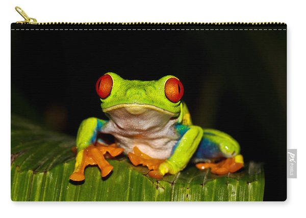 Red Eyes 1 Carry-all Pouch
