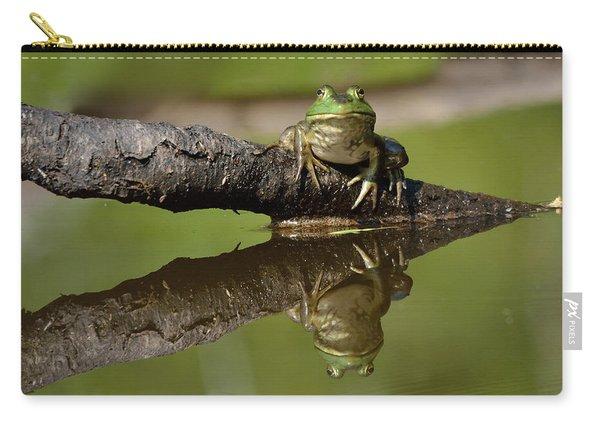 Reflecktafrog Carry-all Pouch