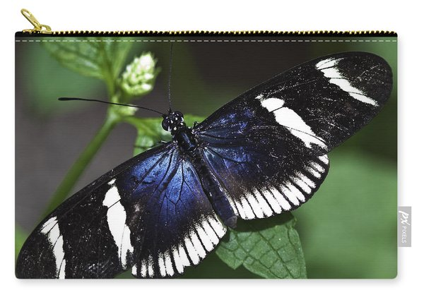 Sara Longwing Carry-all Pouch