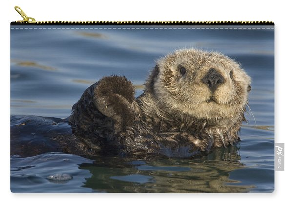 Sea Otter Monterey Bay California Carry-all Pouch