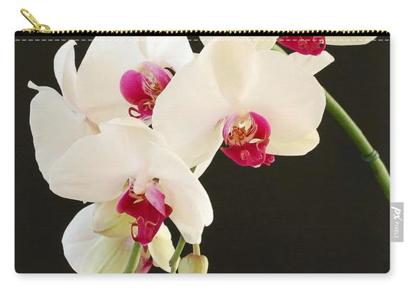 Spray Of White Orchids Carry-all Pouch