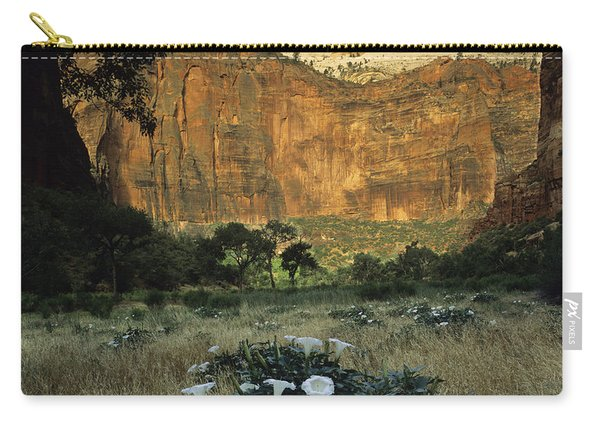 Spring At Big Bend Carry-all Pouch