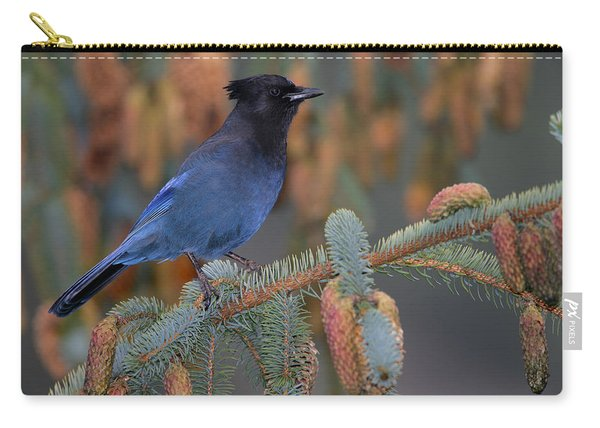 Stellar Jay, Haines, Alaska Carry-all Pouch